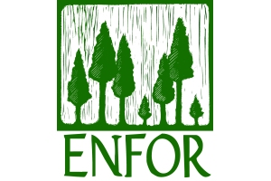 Enfor Ltd