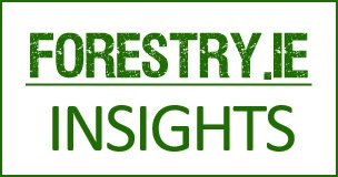 Forestry IE Insights Bordered