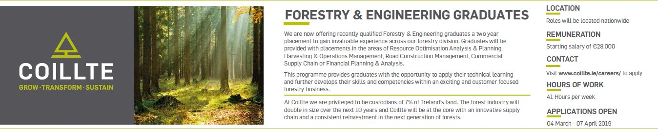 Coillte Recruitment 2019