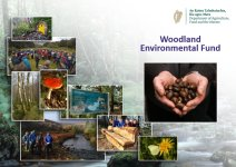 Woodland Environmental Fund