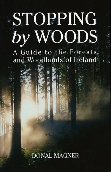 Stopping By Woods by Donal Mager