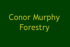Conor Murphy Forestry