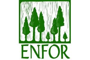 Enfor Ltd