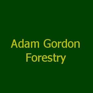 Adam Gordon Forestry