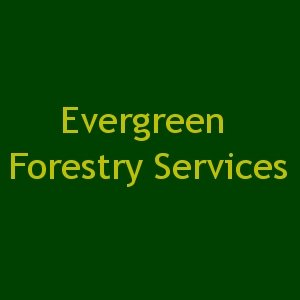Evergreen Forestry Services
