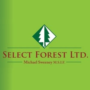 Select Forest Ltd